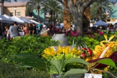 Food_and_Wine_Festival_2019-34